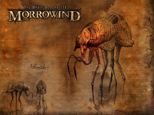 Обзор The Elder Scrolls III: Morrowind