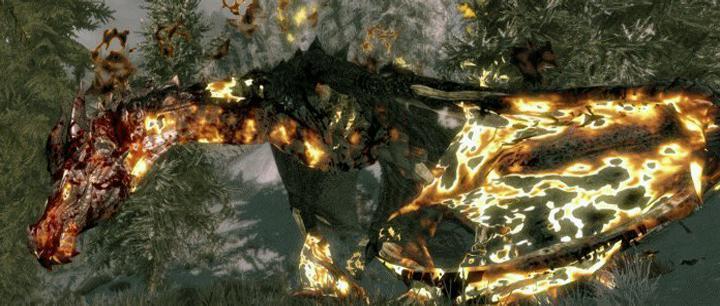 Skyrim: Гайд по драконам