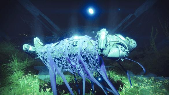 Последний штрих в Destiny 2